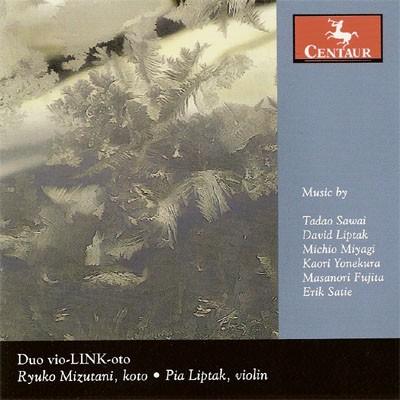CRC 2882 Duo vio-LINK-oto. Tadao Sawai:  Nakisuna-yo Singing Sand
